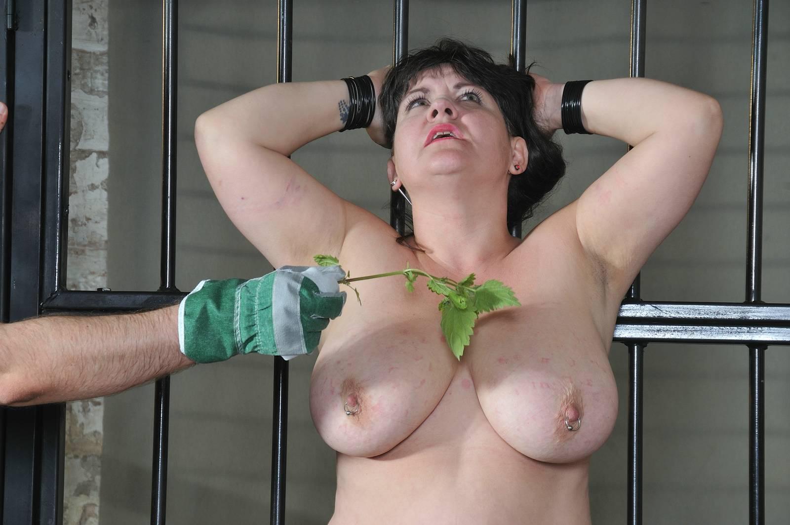 Black cherry porn star