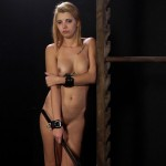 wheel-of-pain-11-elitepain-video2