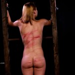 wheel-of-pain-11-elitepain-video9